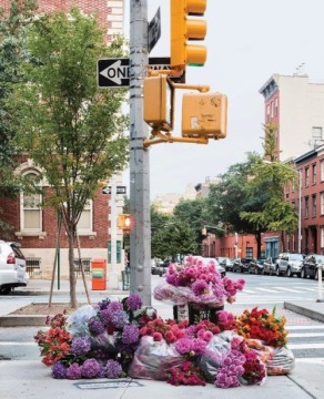 flowers-at-crosswalk.jpg