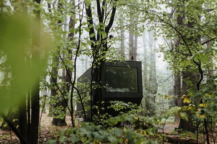 house-forest-looks-like-projector.jpg