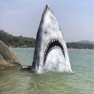 shark-rising-out-water-fake