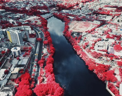 city-blooming-red-river